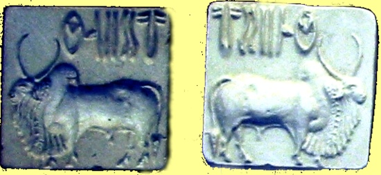 seals from the old Indus civilization in todays Pakistan area