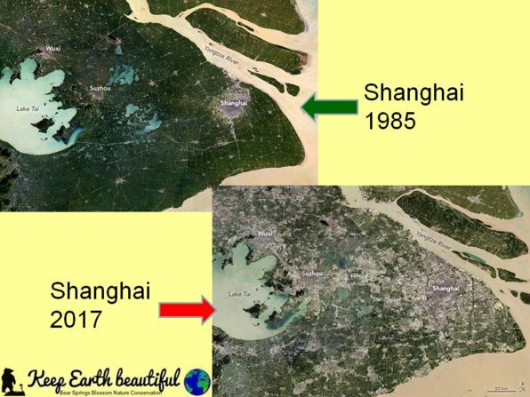 in Shanghai changes are very visible, it gets more and more difficult to keep earth beautiful. Cities all over Earth are growing, space for humans and nature is shrinking, areas for food planting are shrinking, life is changing