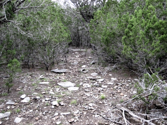 nature trails are beautiful to walk, help to maintain a Texas Hill Country property, reduce erosion, connect people to the outdoors, are just fun in nature