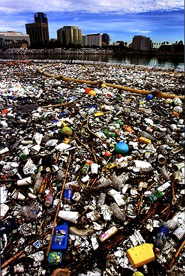 Nature conservation online: Garbage does not make Earth beautiful. What you see is not all trash, a contaminated dirty beach: many things are resources = recyclables that should be recycled, re-used, to lower land pollution, air pollution and to keep earth clean